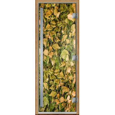 Дверь стеклянная для бани и сауны Престиж Фотопечать Березовые листья 190х70