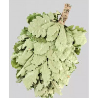 Веник из кавказского дуба «Экстра»  в инд. упаковке